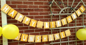 sunshine party banner